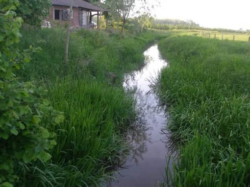 Haelense Beek stroomt langs onze vergaderlocatie, eigen terras