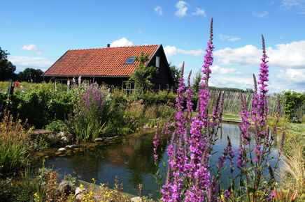 Natuurlijke zwemvijver huisje